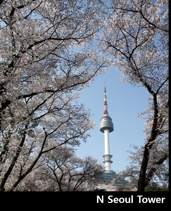 N Seoul Tower 이미지